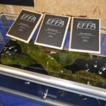 Відкрите міжнародне змагання по в'язанню мушок у 2013р. від EFFA